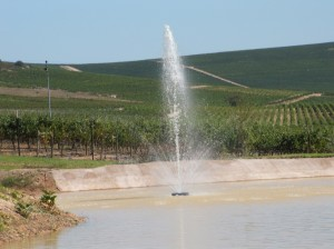 Floating fountain pump 1