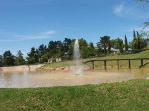 Floating fountain pump 2