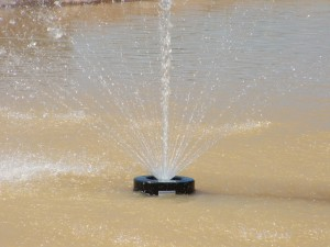 Floating fountain pump 3